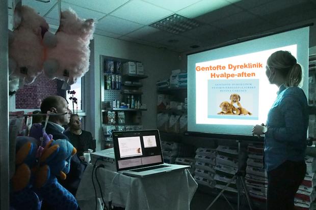 Vores dygtige veterinærsygeplejerske Betina Carlsen