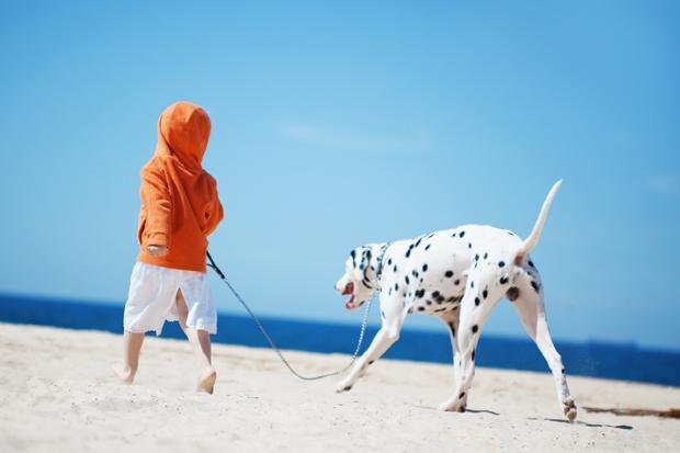 Børn og hunde